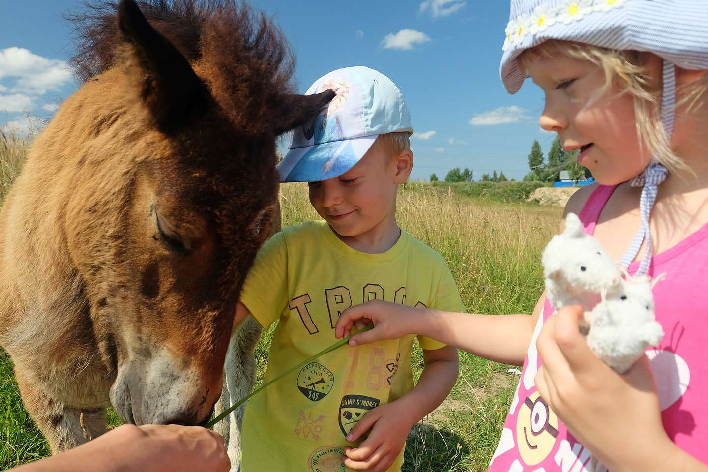 Αγροτουρισμός - παιδιά και ζώα